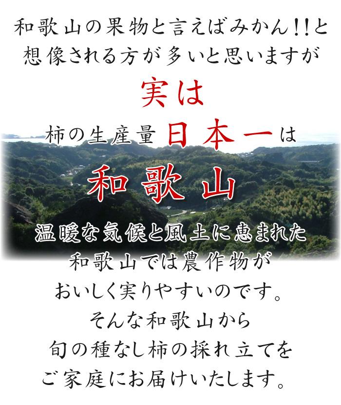 和歌山と言えばみかん!実は柿の生産量日本一は和歌山なんです
