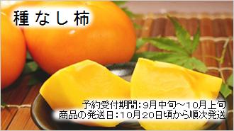 生産量日本一の和歌山からお届けします!